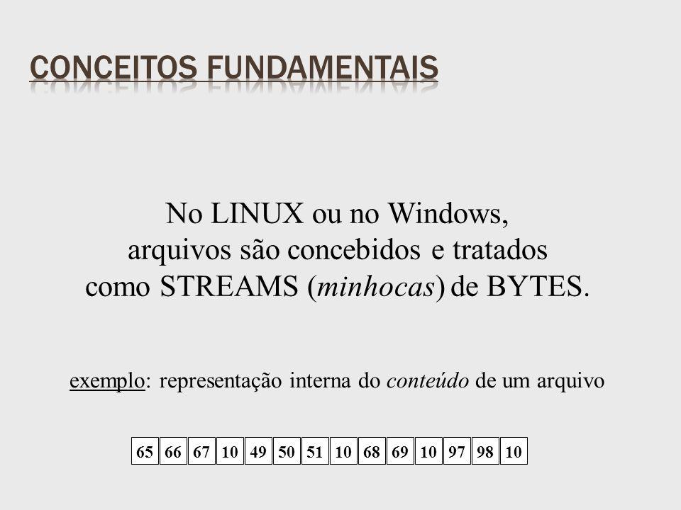 No LINUX ou no Windows, arquivos são concebidos e tratados como STREAMS (minhocas) de BYTES.