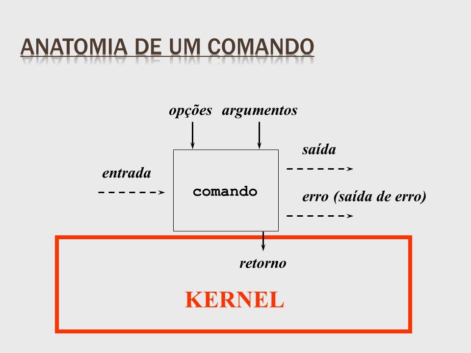 entrada saída erro (saída de erro) retorno opçõesargumentos comando KERNEL