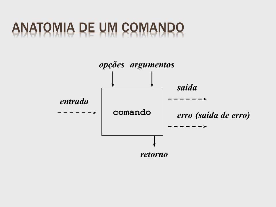 entrada saída erro (saída de erro) opçõesargumentos retorno comando