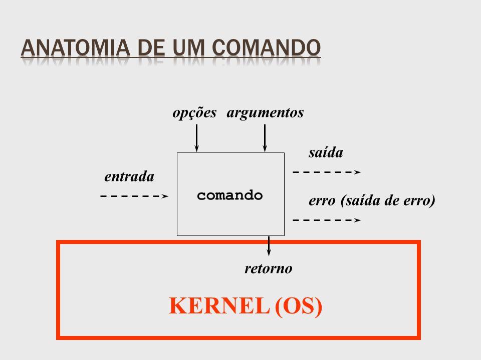 entrada saída erro (saída de erro) retorno opçõesargumentos comando KERNEL (OS)