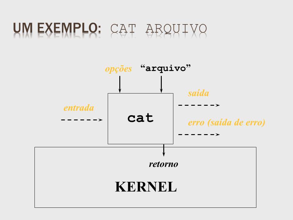 saída retorno arquivo cat KERNEL opções entrada erro (saída de erro)
