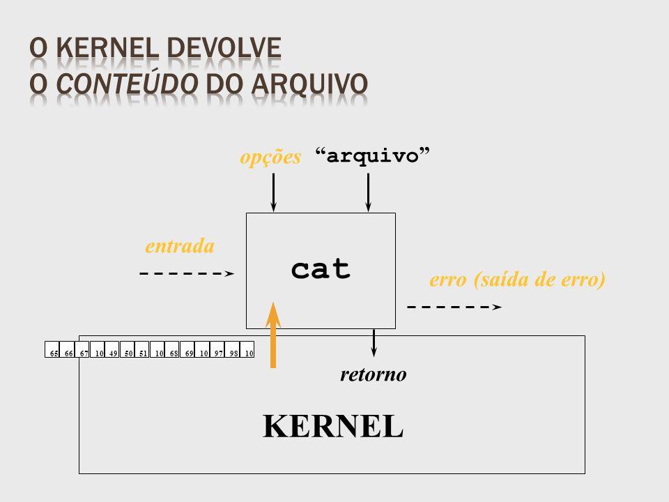 retorno arquivo KERNEL opções entrada erro (saída de erro) 6566671049505110686910979810 cat