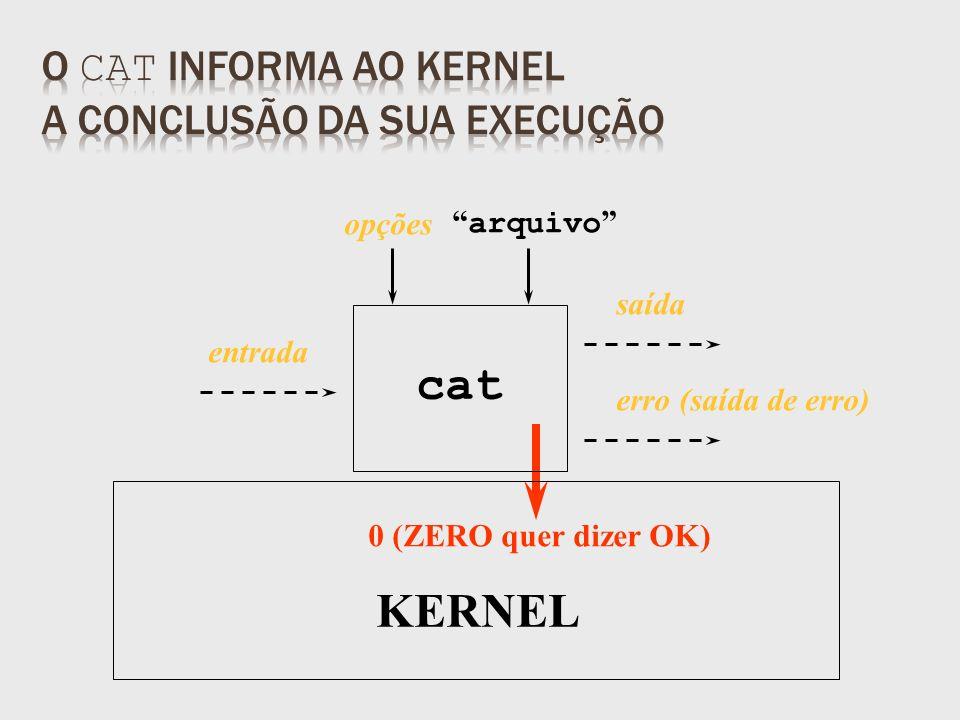 saída 0 (ZERO quer dizer OK) arquivo KERNEL opções entrada erro (saída de erro) cat