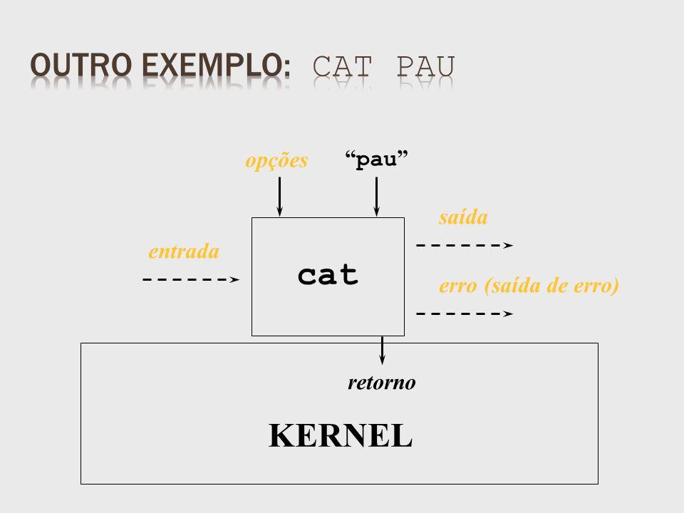 saída retorno pau cat KERNEL opções entrada erro (saída de erro)