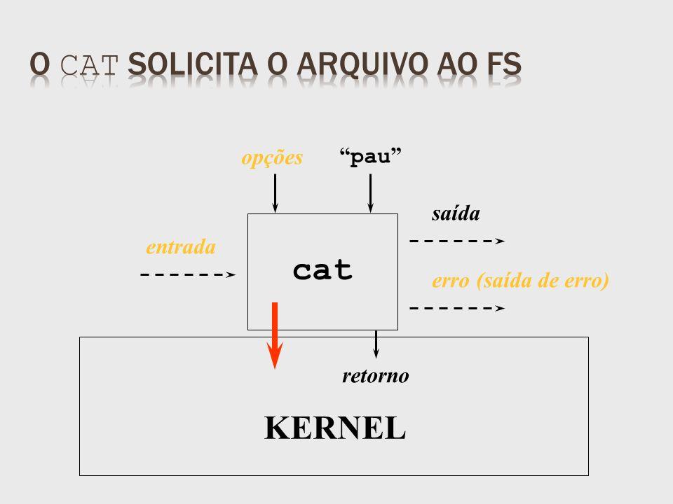 saída retorno pau KERNEL opções entrada erro (saída de erro) cat