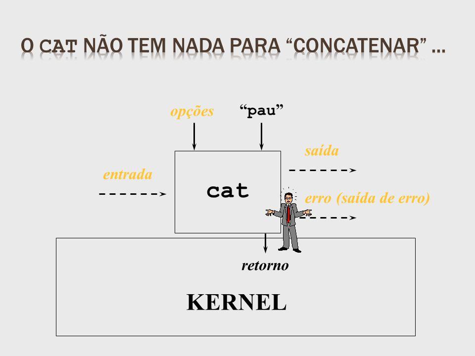 retorno pau KERNEL opções entrada cat saída erro (saída de erro)