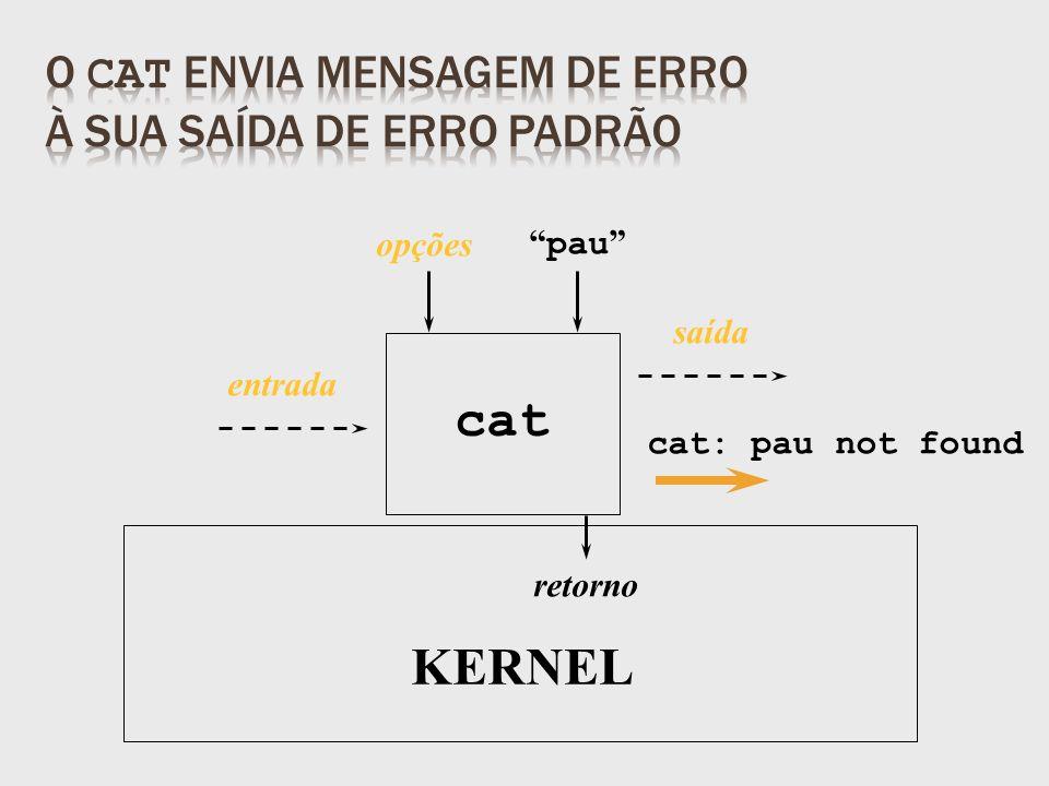 retorno pau KERNEL opções entrada cat: pau not found cat saída