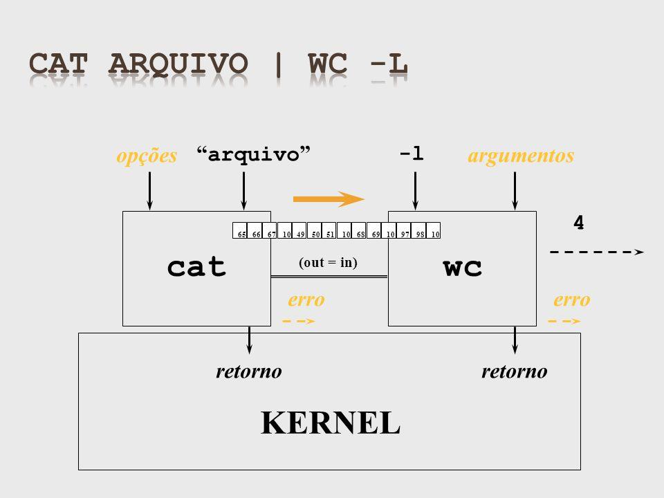 (out = in) retorno arquivo cat KERNEL opções erro wc -l argumentos retorno erro 4 6566671049505110686910979810