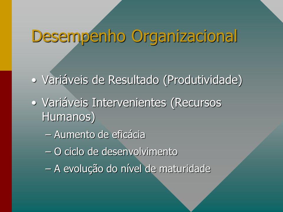 Desempenho Organizacional Variáveis de Resultado (Produtividade)Variáveis de Resultado (Produtividade) Variáveis Intervenientes (Recursos Humanos)Vari
