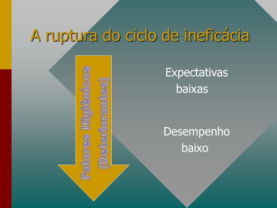 A ruptura do ciclo de ineficácia Expectativas baixas Desempenho baixo