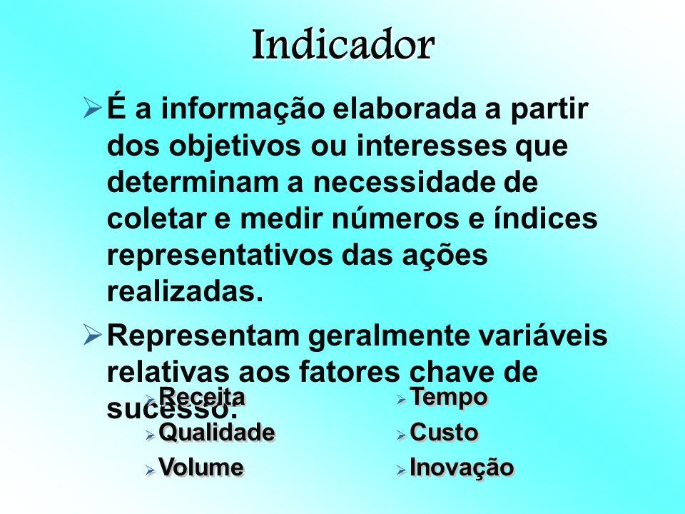 Indicador É a informação elaborada a partir dos objetivos ou interesses que determinam a necessidade de coletar e medir números e índices representativos das ações realizadas.