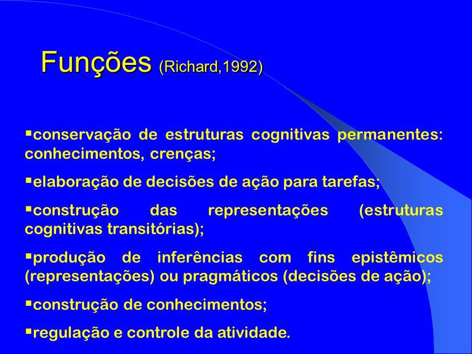 Funções (Richard,1992) conservação de estruturas cognitivas permanentes: conhecimentos, crenças; elaboração de decisões de ação para tarefas; construç