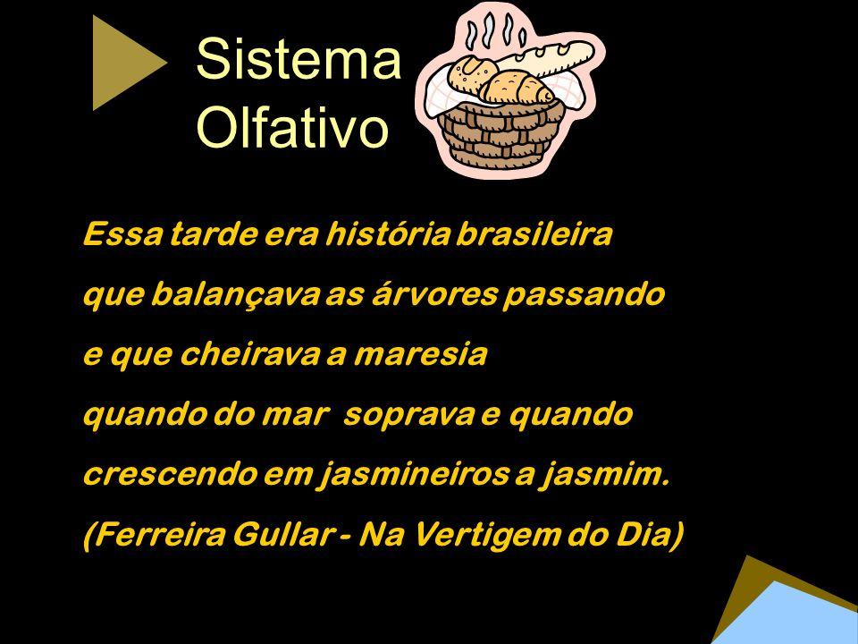 Sistema Olfativo Essa tarde era história brasileira que balançava as árvores passando e que cheirava a maresia quando do mar soprava e quando crescend