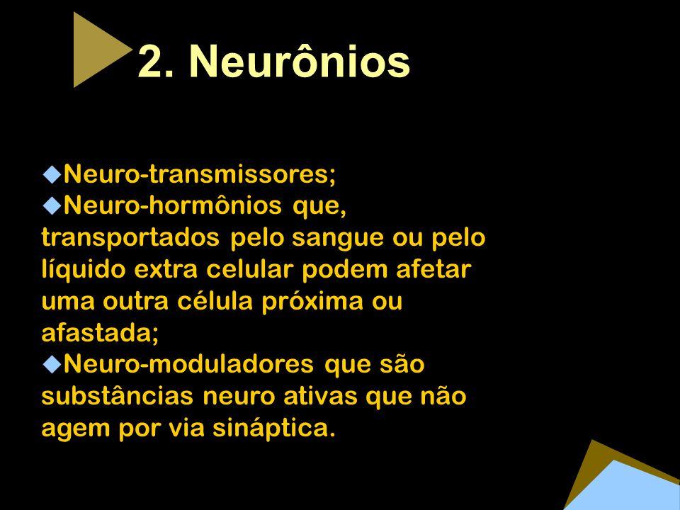 2. Neurônios Neuro-transmissores; Neuro-hormônios que, transportados pelo sangue ou pelo líquido extra celular podem afetar uma outra célula próxima o