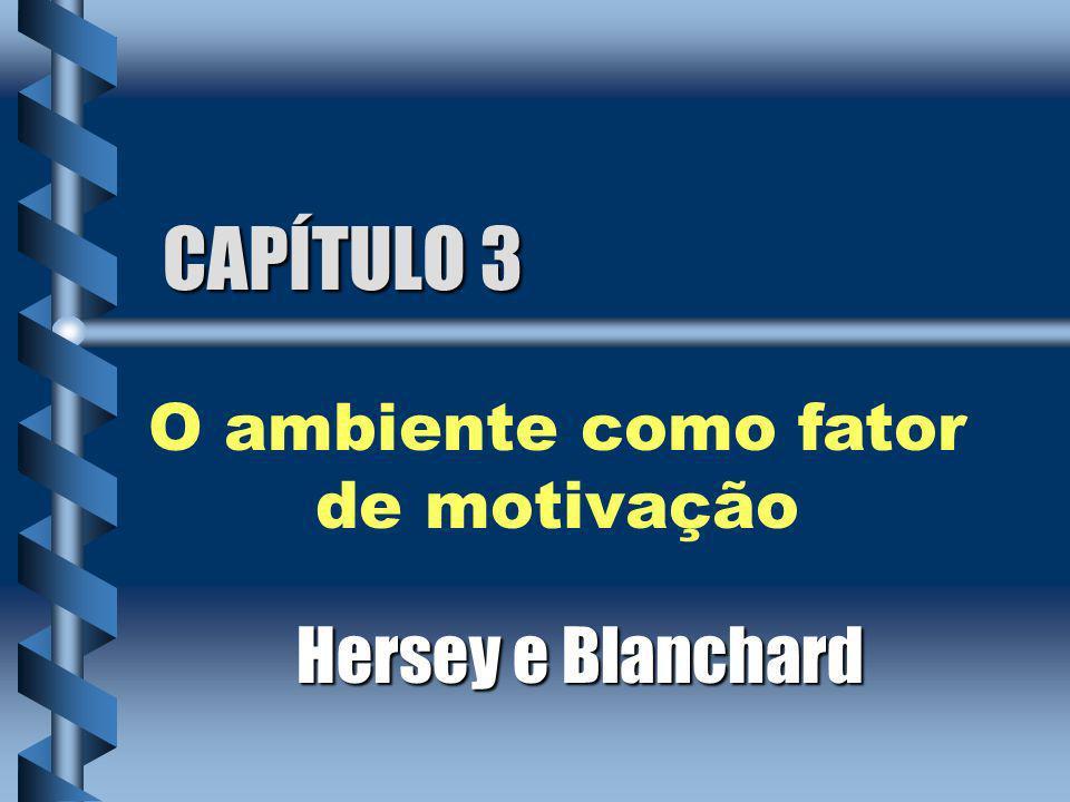 CAPÍTULO 3 Hersey e Blanchard O ambiente como fator de motivação