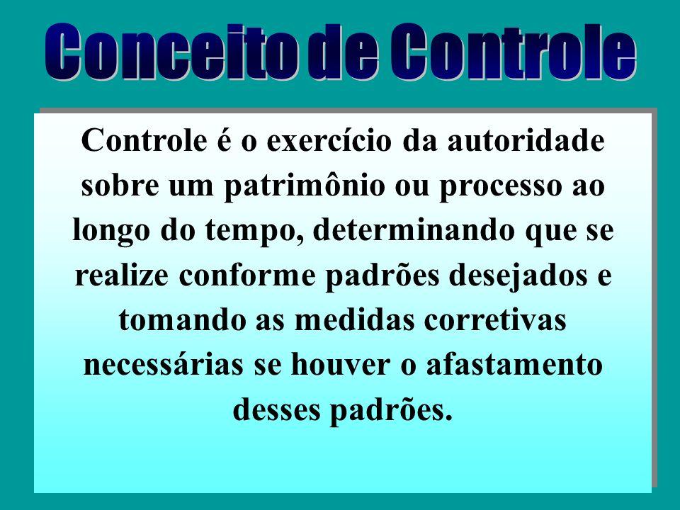 …é assegurar o controle do patrimônio administrado, através do fornecimento de informações e orientação – necessárias à tomada de decisões – sobre a c