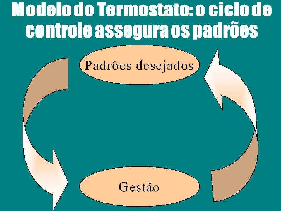 O indicador de performance é a informação representativa dos fatores que determinam o alcance dos padrões ou dos objetivos pré- determinados.