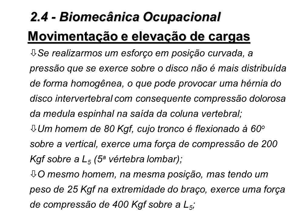 Movimentação e elevação de cargas ò Se realizarmos um esforço em posição curvada, a pressão que se exerce sobre o disco não é mais distribuída de forma homogênea, o que pode provocar uma hérnia do disco intervertebral com consequente compressão dolorosa da medula espinhal na saída da coluna vertebral; ò Um homem de 80 Kgf, cujo tronco é flexionado à 60 o sobre a vertical, exerce uma força de compressão de 200 Kgf sobre a L 5 (5 a vértebra lombar); ò O mesmo homem, na mesma posição, mas tendo um peso de 25 Kgf na extremidade do braço, exerce uma força de compressão de 400 Kgf sobre a L 5 ; 2.4 - Biomecânica Ocupacional
