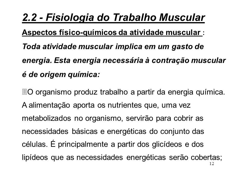 11 Figura 2.4 - Transmissão da informação entre diversos elementos nervosos ou musculares 2.2 - Fisiologia do Trabalho Muscular Sinapse neuro-muscular Sinapse interneuronal Axônio Músculo Dendritas