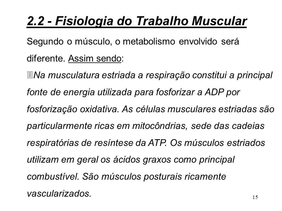 14 Glicose H 2 o e CO 2 Ácido pirúvicoÁcido láctico Fosfatos ricos em energia Com O 2 Sem O 2 Com O 2 Regeneração Contração muscular Figura 2.5 - Diagrama do metabolismo energético no trabalho muscular Fosfatos pobres em energia Fluxo de energia Rotas de reação 2.2 - Fisiologia do Trabalho Muscular