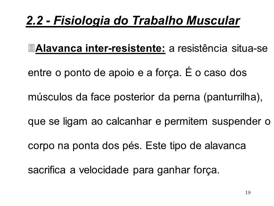 18 3Alavanca interfixa: o apoio situa-se entre a força e a resistência.