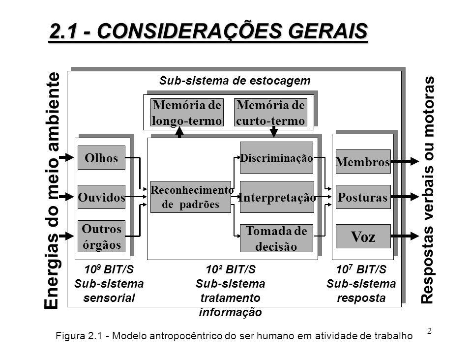 22 Figura 2.5 - A coluna vertebral 2.2 - Fisiologia do Trabalho Muscular