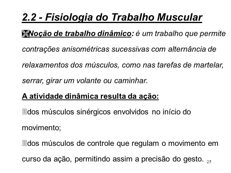 24 Noção de trabalho muscular: Ê A força muscular: é uma ação com uma direção, um sentido e uma intensidade.
