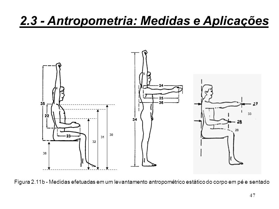 46 Figura 2.11a - Medidas efetuadas em um levantamento antropométrico estático do corpo em pé e sentado 29 2.3 - Antropometria: Medidas e Aplicações