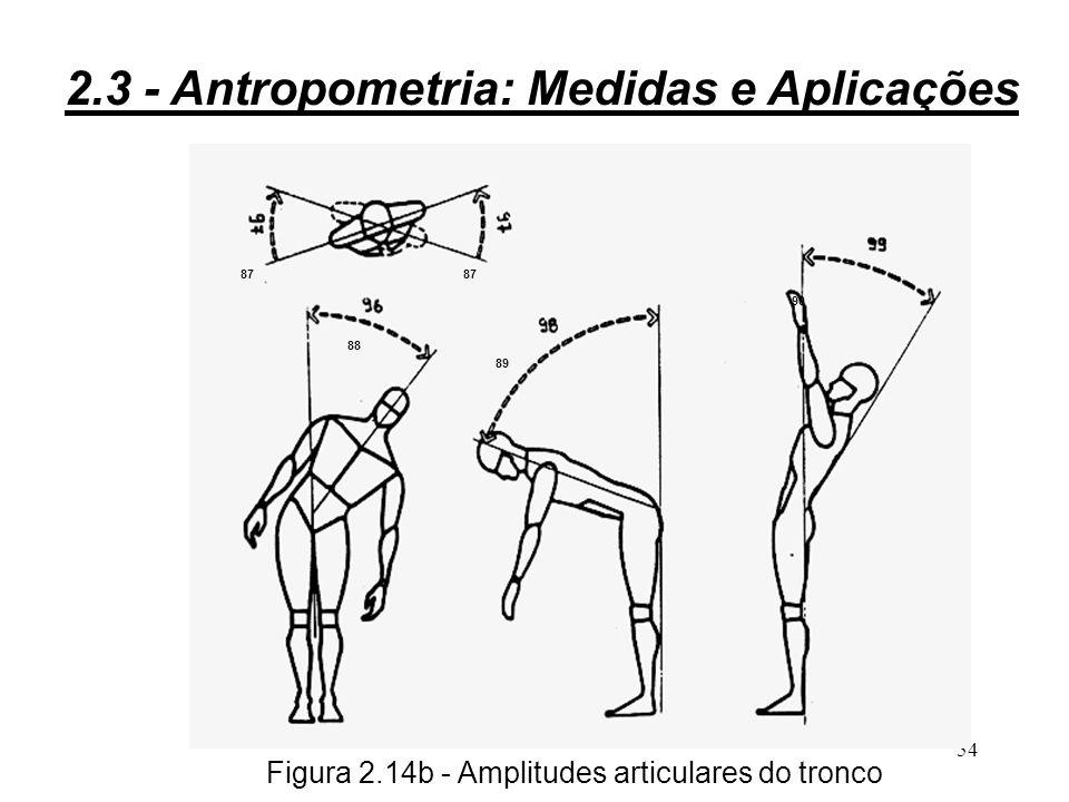 53 Figura 2.14a - Amplitudes articulares da cabeça 79 8081 82 83 84 8586 2.3 - Antropometria: Medidas e Aplicações