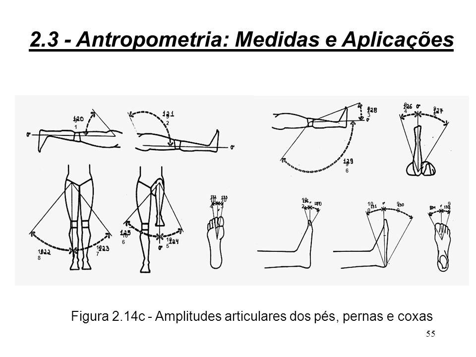 54 Figura 2.14b - Amplitudes articulares do tronco 87 88 89 90 2.3 - Antropometria: Medidas e Aplicações