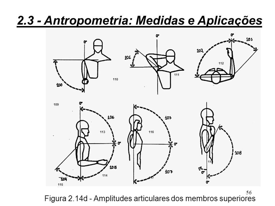 55 Figura 2.14c - Amplitudes articulares dos pés, pernas e coxas 9191 9292 9393 9494 9595 9696 9797 9898 9 10 0 10 1 10 2 10 3 10 4 10 5 10 6 10 7 10 8 2.3 - Antropometria: Medidas e Aplicações