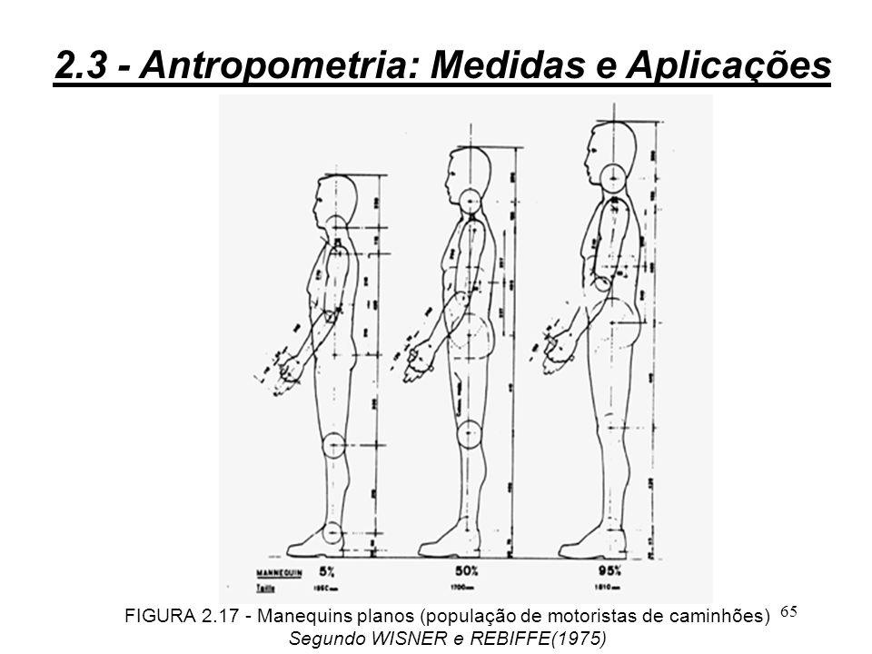 64 Utilização de dados antropométricos: 3direta de tabelas de dados de uma determinada população ; 3por intermédio de manequins planos; 3por intermédio de figuras tridimensionais, com maquetes dos elementos materiais; 3por intermédio de estações CAD, com softwares tipo ERGODATA.