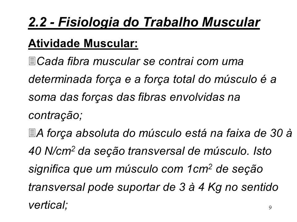 9 Atividade Muscular: 3Cada fibra muscular se contrai com uma determinada força e a força total do músculo é a soma das forças das fibras envolvidas na contração; 3A força absoluta do músculo está na faixa de 30 à 40 N/cm 2 da seção transversal de músculo.