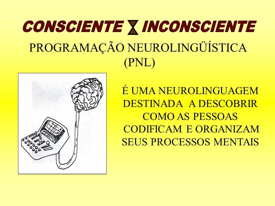 PROGRAMAÇÃO NEUROLINGÜÍSTICA (PNL) É UMA NEUROLINGUAGEM DESTINADA A DESCOBRIR COMO AS PESSOAS CODIFICAM E ORGANIZAM SEUS PROCESSOS MENTAIS