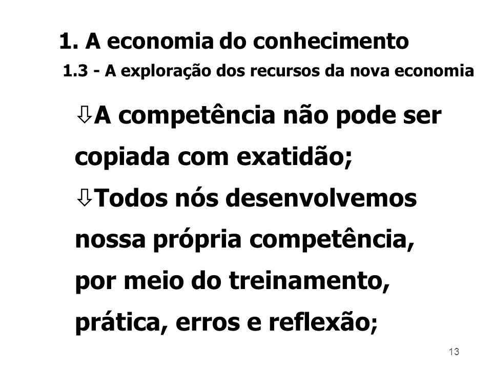 12 Habilidade Competência Perícia 1. A economia do conhecimento 1.3 - A exploração dos recursos da nova economia