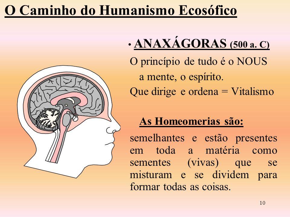 9 Pedra Terra Água Ar Fogo O Caminho do Humanismo Ecosófico ANAXÍMENES (585 a.C.) Para ele o elemento fundamental é o Ar.