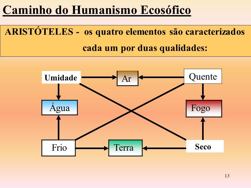 12 O Caminho do Humanismo Ecosófico ARISTÓTELES (384 A.c) Baseia a interpretação nos tipos de movimentos: Potência Ato - Substancial - Qualitativo - Quantitativo - Espacial TELEOLOGISMO A Natureza sempre faz o que é mais belo