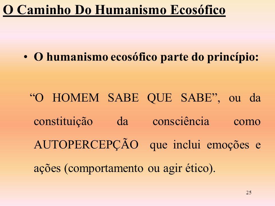 24 O caminho do humanismo Ecosófico O Humanismo ecosófico é marcado pela: –Solidariedade : BIOÉTICA –Interações entre semelhantes –Multiculturalismo –Visão holística: tudo é um –Estética do mundo: AMOR-ÊXTASE-POESIA