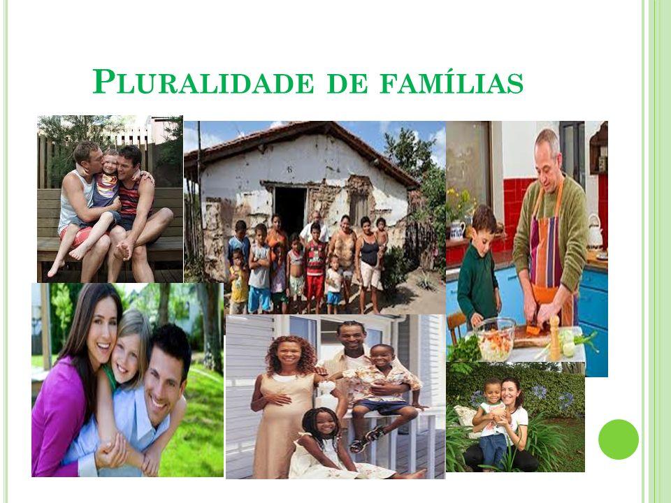 B ASES NORTEADORAS DO TRABALHO COM FAMÍLIAS 5- O profissional deve insistir na garantia dos espaços de sociabilidade.