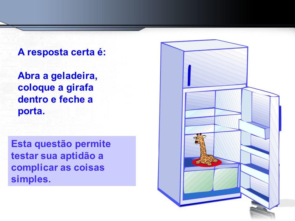 Questão Número 2: Como colocar um elefante numa geladeira?