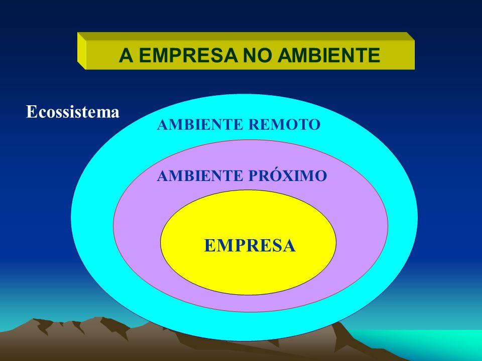 A EMPRESA NO AMBIENTE EMPRESA AMBIENTE PRÓXIMO AMBIENTE REMOTO Ecossistema