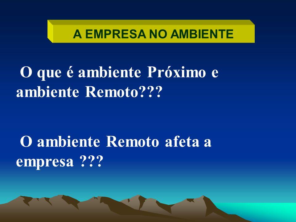 A EMPRESA NO AMBIENTE O que é ambiente Próximo e ambiente Remoto??? O ambiente Remoto afeta a empresa ???
