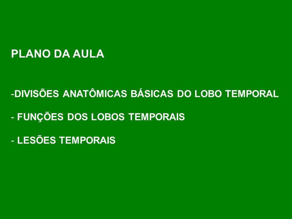 PLANO DA AULA -DIVISÕES ANATÔMICAS BÁSICAS DO LOBO TEMPORAL - FUNÇÕES DOS LOBOS TEMPORAIS - LESÕES TEMPORAIS