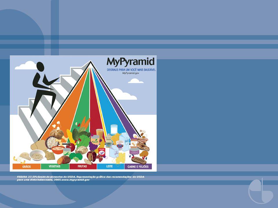 FIGURA 27.5Pirâmide de alimentos do USDA. Representação gráca das recomendações do USDA para uma dieta balanceada, 2005.www.mypyramid.gov