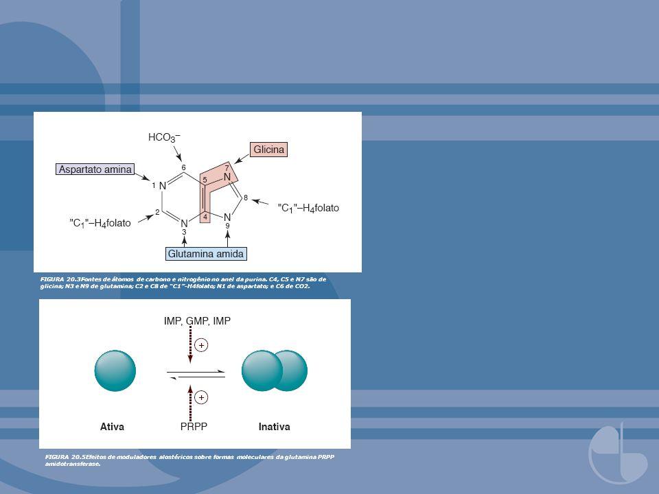 FIGURA 20.3Fontes de átomos de carbono e nitrogênio no anel da purina. C4, C5 e N7 são de glicina; N3 e N9 de glutamina; C2 e C8 de C1-H4folato; N1 de