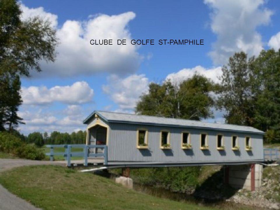 As pontes cobertas existem há des séculos. As mais antigas sobreviventes encontram-se na Europa e datam da Idade Média. Diz-se que os colonizadores qu