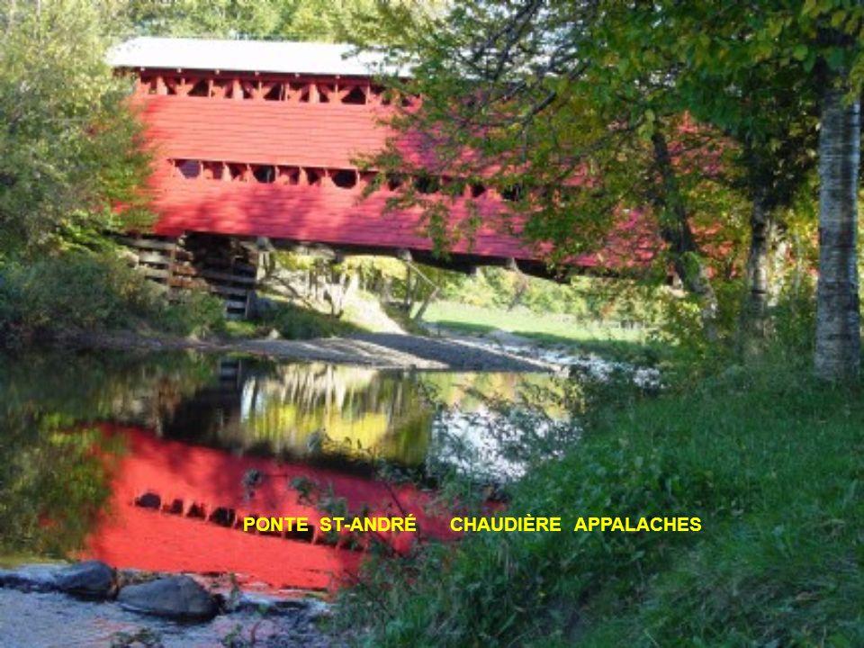 Uma ponte coberta é uma ponte construida em madeira.Comporta um pavimento suportado por longarinas ou travessas, apoiado sobre duas vigas triangulares