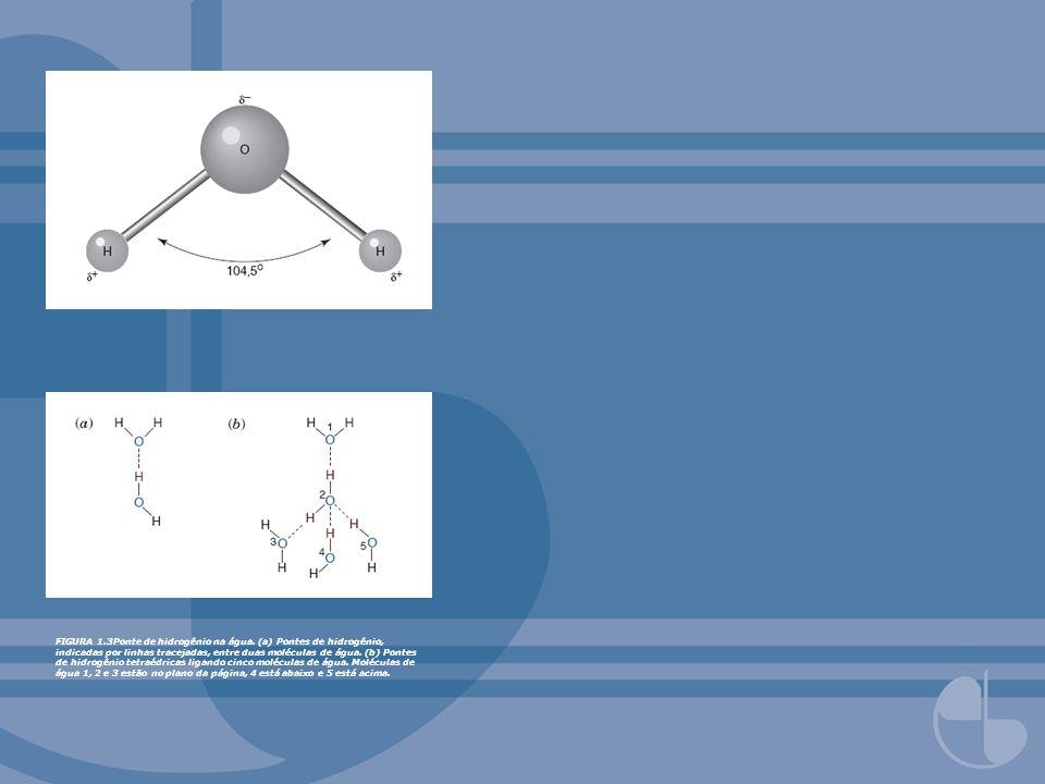 FIGURA 1.3Ponte de hidrogênio na água. (a) Pontes de hidrogênio, indicadas por linhas tracejadas, entre duas moléculas de água. (b) Pontes de hidrogên