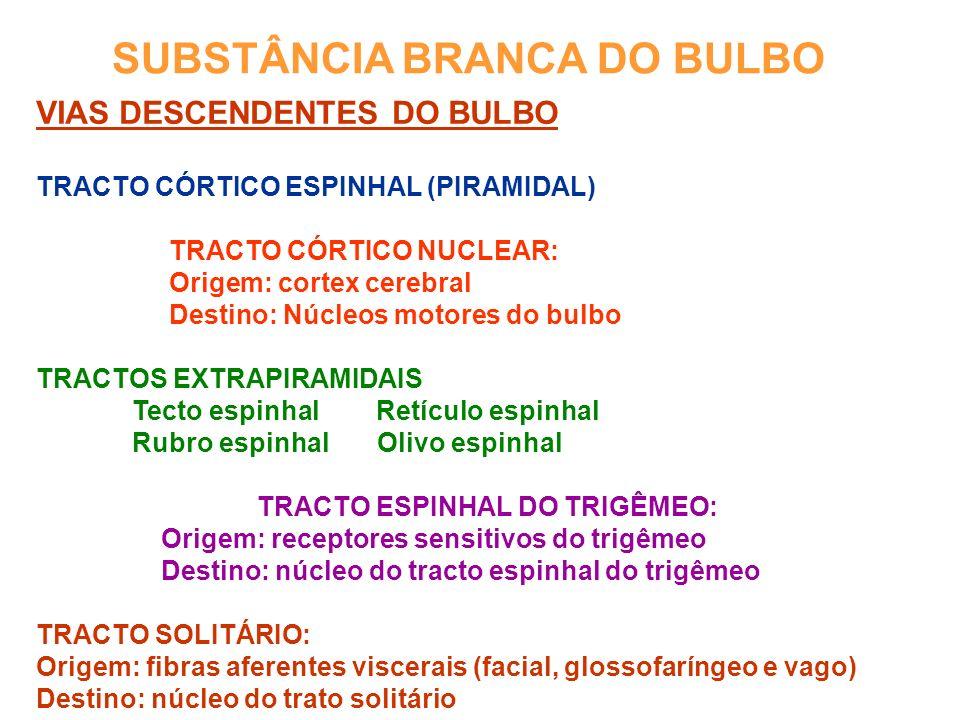 SUBSTÂNCIA BRANCA DO BULBO VIAS DESCENDENTES DO BULBO TRACTO CÓRTICO ESPINHAL (PIRAMIDAL) TRACTO CÓRTICO NUCLEAR: Origem: cortex cerebral Destino: Núcleos motores do bulbo TRACTOS EXTRAPIRAMIDAIS Tecto espinhal Retículo espinhal Rubro espinhal Olivo espinhal TRACTO ESPINHAL DO TRIGÊMEO: Origem: receptores sensitivos do trigêmeo Destino: núcleo do tracto espinhal do trigêmeo TRACTO SOLITÁRIO: Origem: fibras aferentes viscerais (facial, glossofaríngeo e vago) Destino: núcleo do trato solitário