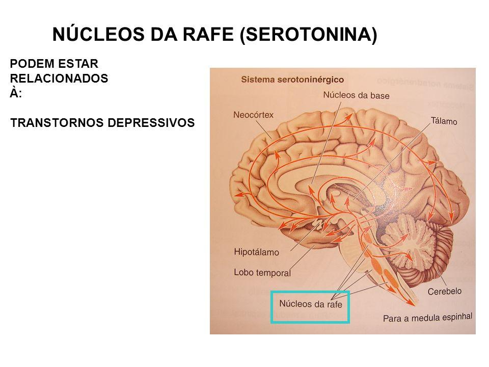 NÚCLEOS DA RAFE (SEROTONINA) PODEM ESTAR RELACIONADOS À: TRANSTORNOS DEPRESSIVOS
